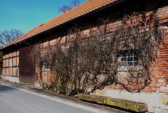 Eilum Kr.Wolfenbüttel 100407 016