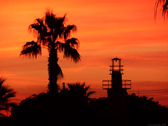 Just after Sunset (-Filippos-) Tags: sunset orange tree tower silhouette cyprus palm 2010 kypros        btsf