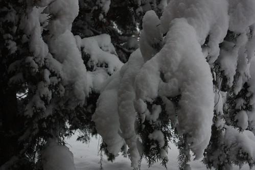 Heaps of snow