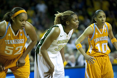 _T4U0107-1 (cvorhisphoto) Tags: ladies girls college sports basketball women university waco tennessee competition strong tall athletes 500 patsummitt espngame kimmulkey britneygriner theferrellcenter baylorladybearsvstennesseeladyvols recordcrowd10 6foot8inches