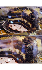 decadence. (We the Living Photography) Tags: food dessert harbor junk factory sweet chocolate maryland cheesecake baltimore chips inner delicious