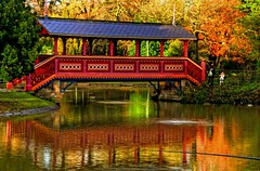 Birkenhead Park Swiss Bridge (Shertila Tony) Tags: trees england sky reflection water clouds pond europe britain birkenhead hdr wirral birkenheadpark colorphotoaward platinumheartaward swissbridge thebestofday gnneniyisi italianboathouse