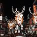 sterrennieuws vtmkerstparade2010tongeren