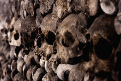Catacombes Skulls (Crazy Ivory) Tags: lighting city light shadow bw brown white black paris france public lamp monochrome grave graveyard wall canon underground dead skulls grid eos death lights crazy blurry gate long solitude die place bokeh decay guard corridor wideangle down bowl eerie graves creepy human pile bones killed bone lamps dslr solitary remains pest unsharp catacombes corridors vanish piled vanished katakomben 40d pileofbones pileofskulls gettygermanyq2 gettygermanyq3 gettygermanyq4