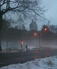 man with dog ( Brusselssprout_in_Manhattan  Eliane ) Tags: nyc winter newyork fog centralpark manhattan upperwestside petitmatin morningrun