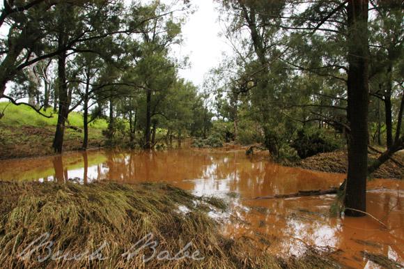 flooddamage_0129