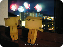 365/365: final (sean eng) Tags: color digital canon toy actionfigure amazon toystory ixus 365 danbo project365 revoltech seaneng danboard