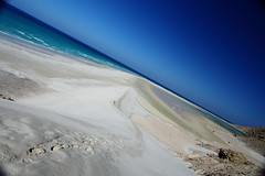 Beach lagoon of qalansylah, Soqotra Island, UNESCO, yemen (anthony pappone photography) Tags: pictures travel nature digital canon lens landscape island photography photo foto image picture natura unesco arab arabia adan yemen arabian fotografia bottletree paesaggio reportage photograher arabo yemeni phototravel yaman socotra soqotra arabie arabiafelix arabieheureuse اليمن arabianpeninsula يمني 也門 سقطرى сокотра alyaman yemenpicture yemenpictures 索科特拉 ソコトラ सोकोट्रा dragonsbloodtrees