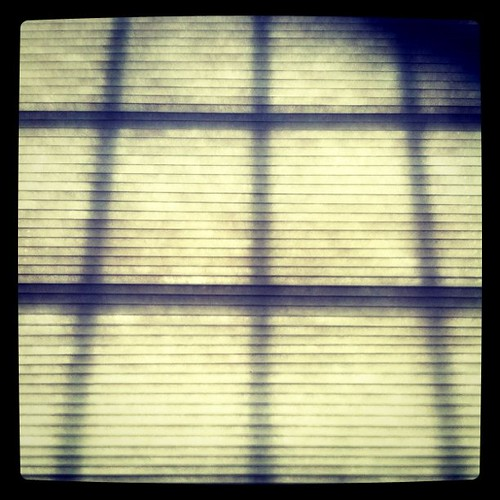 five: shade