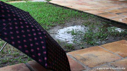 PAD 06.01.11 Rain