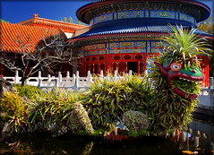 Dragon-Topia (Jeff_B.) Tags: china flowers epcot topiary day dragon disney disneyworld pavilion epcotcenter worldshowcase chinapavilion flowerandgarden flowerandgardenfestival templeofheavan