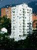 Mi antígua ventana (alejocock) Tags: city travel viaje 2004 colombia photographer colombian ciudad medellin medellín antioquia urbe acock alejocock httpsurealidadblogspotcom alejandrocock