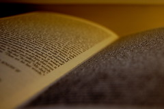 8/365 - 08/01/11 (Johanna Bocher) Tags: writing print reading book nikon pages literature 365 favourite shallowdof jonathansafranfoer d40 extremelyloudincrediblyclose 8365 080111 3652011
