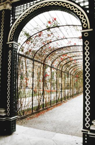 Schönbrunn palace gardens. Vienna. Jardines del palacio de Schönbrunn. Viena
