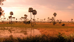 18 12 2010 (eddy_) Tags: road red rojo asia cambodia eddy naranja milfort