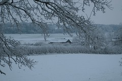Schneelandschaft: Aufnahme vom Westwall Richtung Wikinger Häuser und Haddebyer Noor - Wikinger Museum Haithabu WHH 19-12-2010