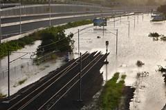 Brisbane Floods - Gailes Queensland (martinhoward) Tags: water river flooding australia brisbane queensland floods ipswich bremer goodna gailes qldfloods