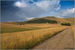 Zlatibor - Cigota (Miodrag Badnjar) Tags: mountain srbija zlatibor planina pejzaz livade cigota pasnjaci