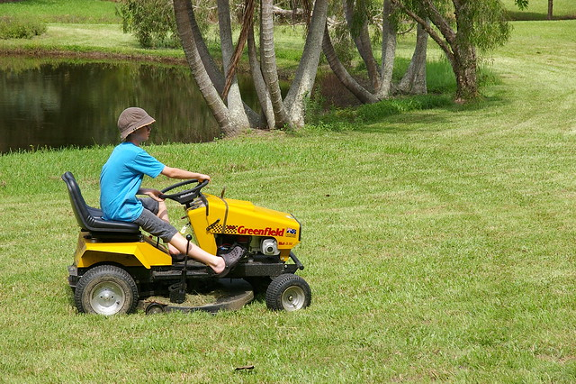 annual mowing of the grass
