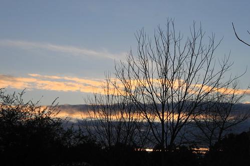 Light in January