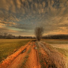 Sweet morning  -  Explore (rinogas) Tags: morning winter italy clouds sunrise nikon piemonte cuneo hdr naturepoetry nikkor1224dx sommarivadelbosco vertorama rinogas