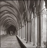 Cloisters (Alistair Haimes) Tags: film cathedral bronica epson salisbury cloisters v700 gettyimagesuklocation