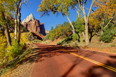 "Road Through Zion National Park - Autumn (IronRodArt - Royce Bair (""Star Shooter"")) Tags: road park trip travel blue autumn trees red vacation sky orange usa mountain southwest color tree fall nature beautiful leaves yellow rock backlight america court river season landscape utah woods highway sandstone colorful desert natural outdoor scenic peaceful sunny canyon foliage formation national cottonwood trunk zion wilderness zionnationalpark curve byway courtofthepatriarchs patriarchs"