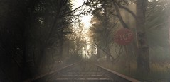 Natures peace will flow into you as sunshine flows into trees. -  Netherwood (Zedekiah Wentz) Tags: secondlife landscapes netherwood