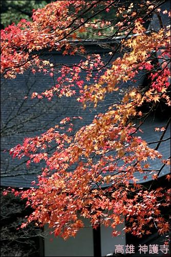 京都 高雄 神護寺