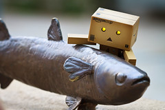 I caught a big fish~!! (Ali Tse) Tags: toy toys amazon limited danbo revoltech jfigure danboard