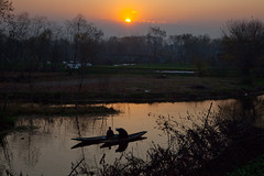 0139 A sunset rendezvous--Dal Lake , Kashmir (ngchongkin) Tags: india niceshot together harmony showroom soe shiningstar nationalgeographic musictomyeyes dallake favoritephotos thegalaxy beautifulshot superphotographer anythingyoulike peaceaward avpa flickraward flickrbronzeaward crystalawards kissedbylight heartawards eperkeaward betterthangood flickridol flickrestrellas beautifulaward thebestshot highqualityimages spiritofphotography qualifiedmembersonly 469photographer thebestshots artofimages angelawards visionaryartsgallery pegasusaward flickrsgottalent flickrssuperstartalent bestpeopleschoice eliteflickridol mygearandme mygearandmepremium fireworksofphotos fabulousplanetevo goldstarawardlevel1 fotografkurdu photographyforrecreationgoldaward photographyforrecreationemeraldaward photographyforrecreationsilveraward photographyforrecreationbronzeaward photographyforrecreationsapphireaward framebangladesh highqualityimagequaifiedmembersonly digitographer photohobbylevel1 thethreeangelslevel1 theworldinthemyeyes