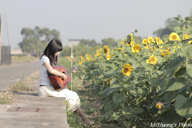 吉他.女孩.向日葵