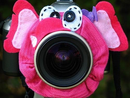 Elephant Lens Pet