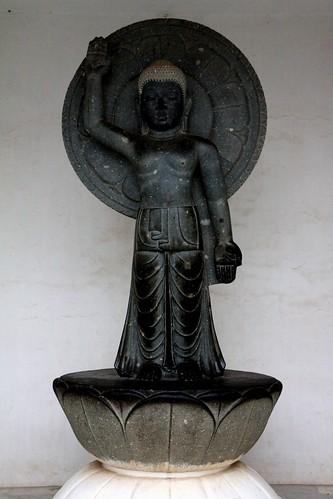 Dhauli Orissa