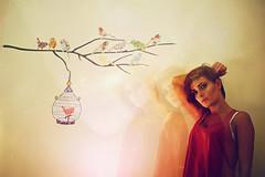 The Birds (hool a hoop) Tags: birdcage girl birds stars room universe