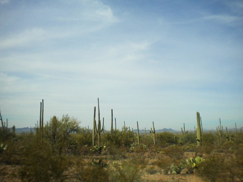 Desierto en Arizona