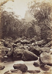 The Valley of the Grose, ca. 1880 / photographer NSW Government Printer (State Library of New South Wales collection) Tags: cliff mountain forest river bush sandstone boulder valley eucalyptus gumtree