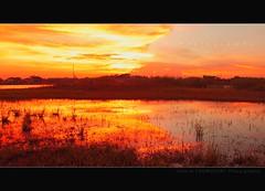 My Day Goes Like,,,,A Twilight [দিনের শেষে ] E X  P L O  R E D (HamimCHOWDHURY  [Read my profile before you fol) Tags: life light shadow red portrait blackandwhite sun white black flower green nature canon eos twilight colorful faces blu sony surreal excellent dhaka vaio rgb bangladesh dlsr 60d framebangladesh 505036 692410122010