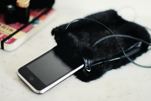 Karl Largerfeld Ipod fur case