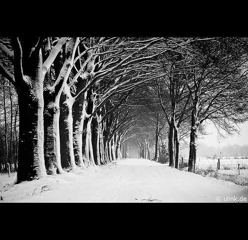 _black&white