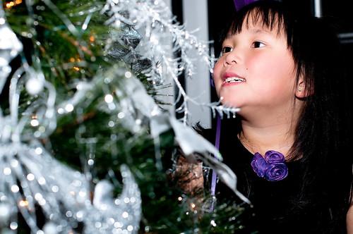 Christmas Card 2010 102