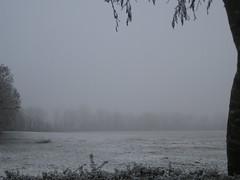 Winter Mist (djlenabean) Tags: winter mist snow cold field misty fog rural landscape grey countryside blurry december foggy dew distance chill emptiness vast winterlandscape wintery