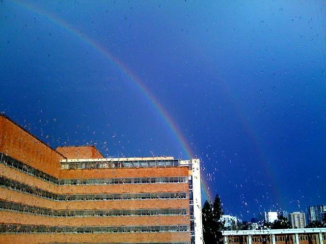 Life:  Double Rainbow'd