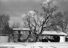 Snowy house (hpulley) Tags: winter blackandwhite film waterloo expired ilforddelta400 canonftbn ilfotecddx ilfostop ilfordrapidfixer yellow8filter ilfotol canonfd35mmf2sscii