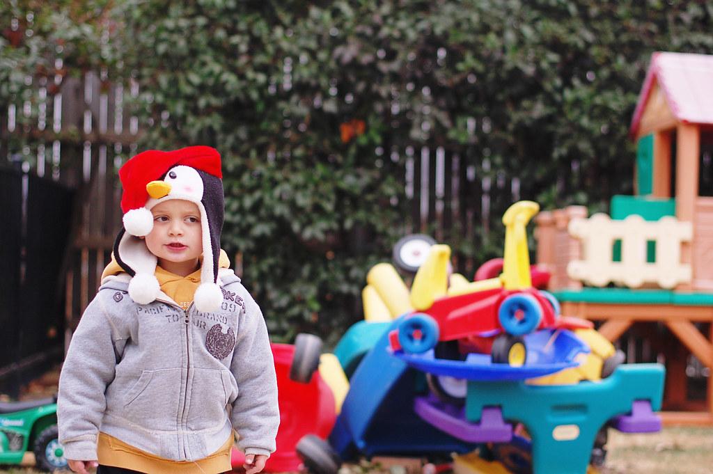 boys junk yard 2010