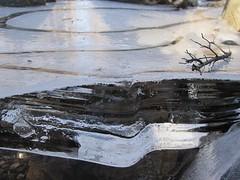 IMG_5934 (Ellen Bulger) Tags: winter ice nature woods connecticut woodbridge wepawaugriver