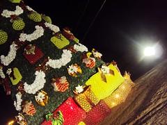 O natal (ise_giovanna) Tags: pet flores verde branco natal cores de photo paisagem cu vermelho noite criana crianas papainoel infancia rvore sonho presentes colorido feita garafa garafas