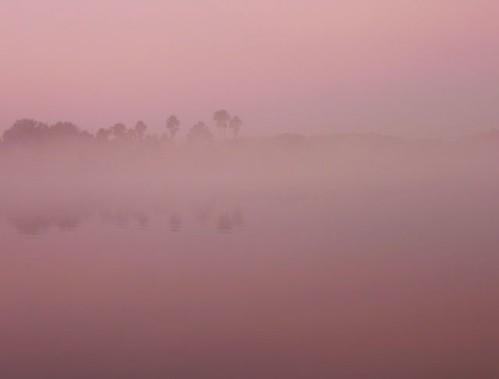 mist-moon-lake