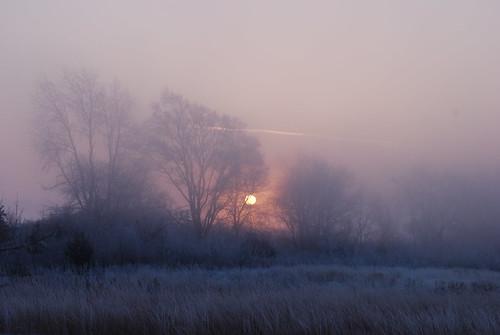 Sunrise 12-29-10