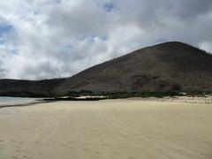 Organic White Sand Beach, Punto Cormorant - Floreana Island